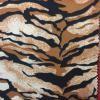 33-tigre
